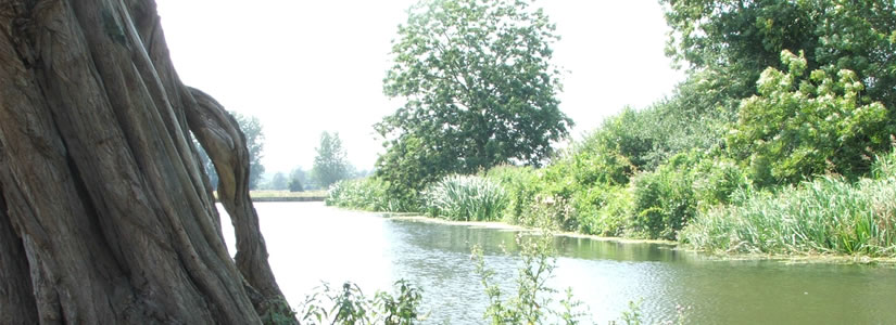 Photo of river at Flatford Mill, Suffolk 2006